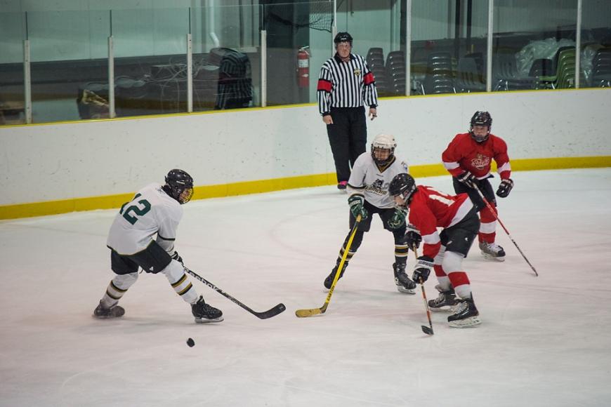 hockey_0080