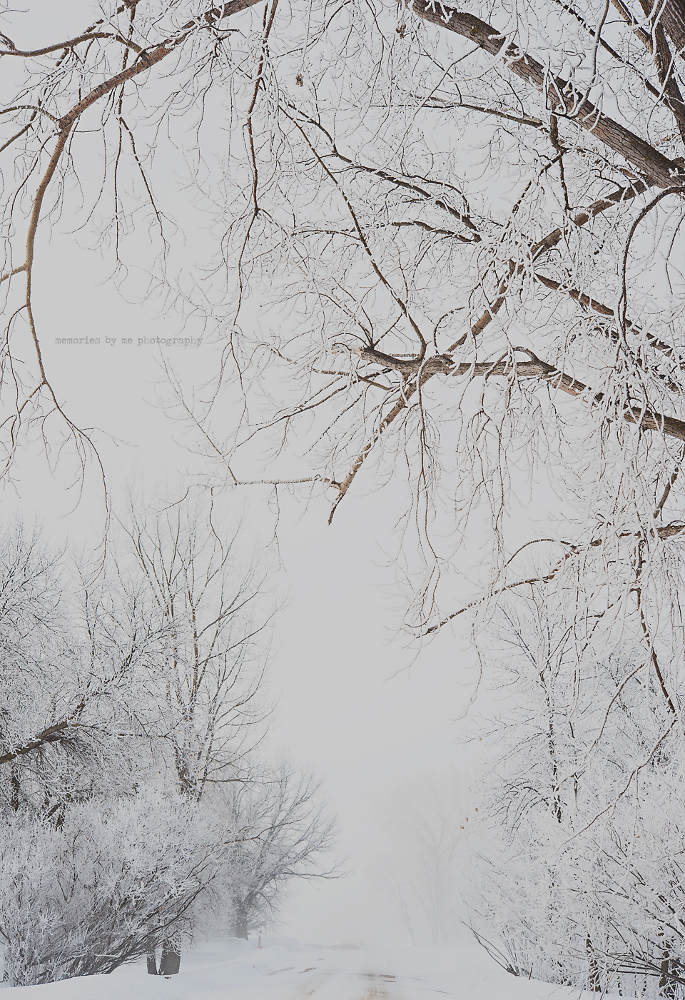 Snow On First Day Of Spring Makes Me >> Snow Memories By Me Photography