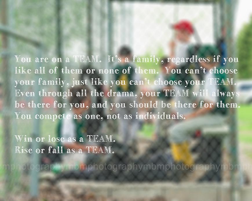 Baseball inspire 8